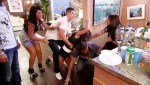 Jersey Shore Fighting