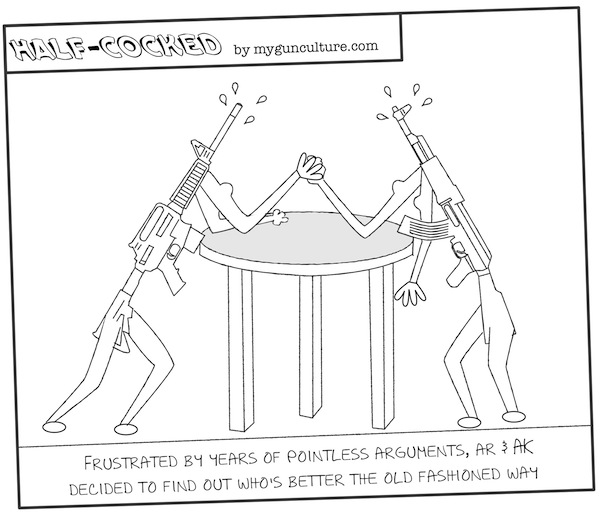 AR-15 vs AK-47 debate settled