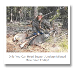 Mule Deer Foundation Launches Underprivileged Deer Grant Program