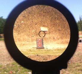 Bushnell Elite Tactical 1 6 5x24