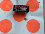 Winchester's PDX1 Defender 12 Gauge Buckshot and Slug Ammunition
