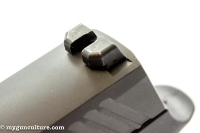 Both front and rear sights on the Sig Sauer P320 mount with dovetails, so they're easy to swap.