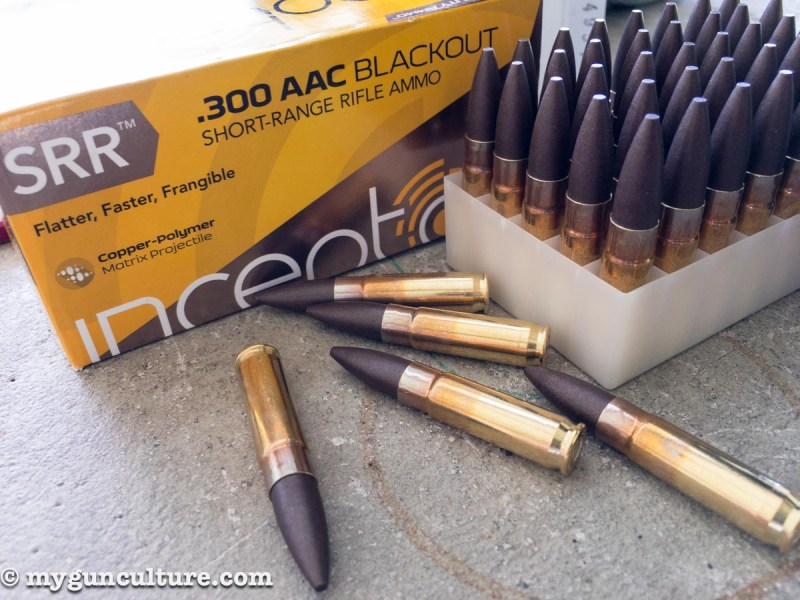 Plastic bullets? Well, yes, at least in part. Check out this new 300 Blackout training load from Polycase Ammunition.