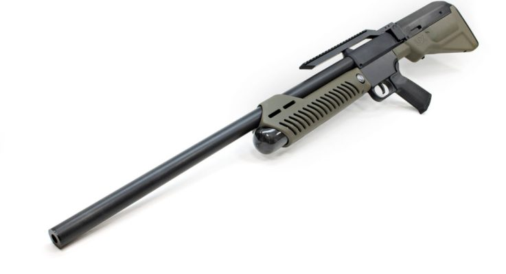 Airguns for Hunting?