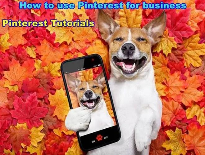 Business Account Vs Personal Tutorials