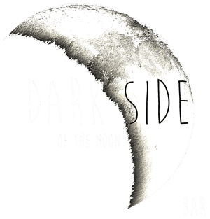 Harvest Moon Cafe Downtown Rome, GA bar • Dark Side of the