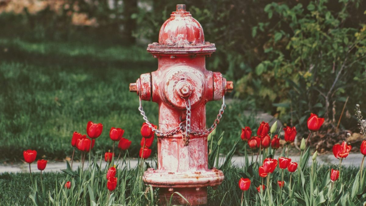 fire hydrant (exercise)