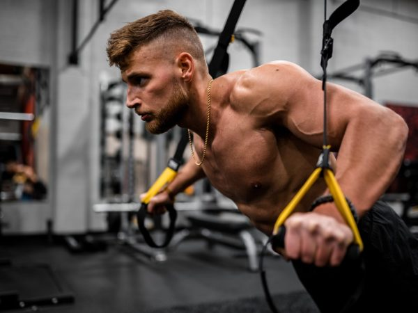 chest and triceps workout dips