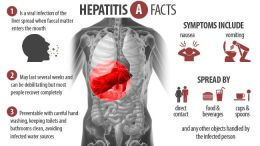 Hepatitis A Symptoms Causes Treatment Myhealthincheck