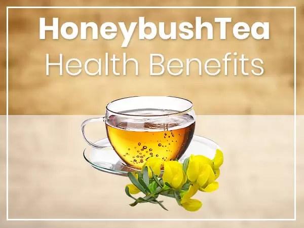 Benefits Of Honeybush tea