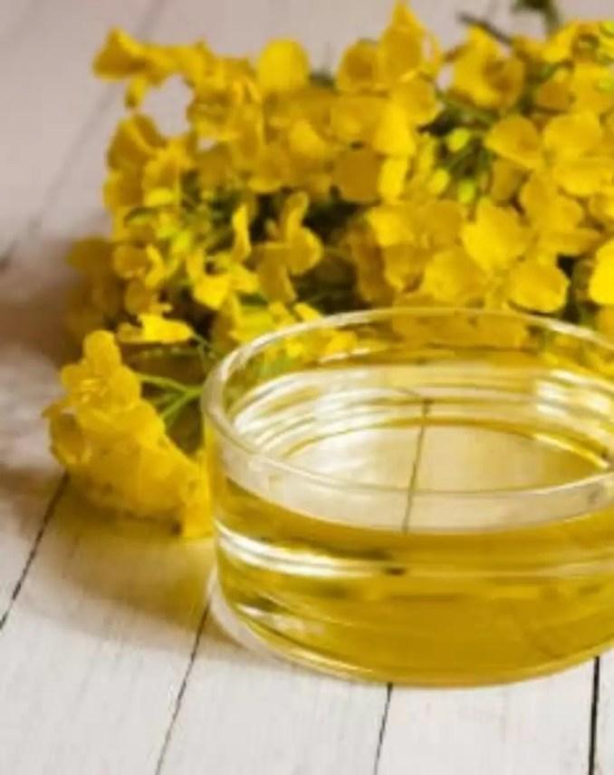 Rapeseed canola oil