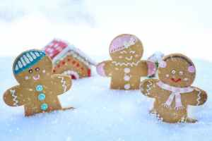 gingerbreads on snow