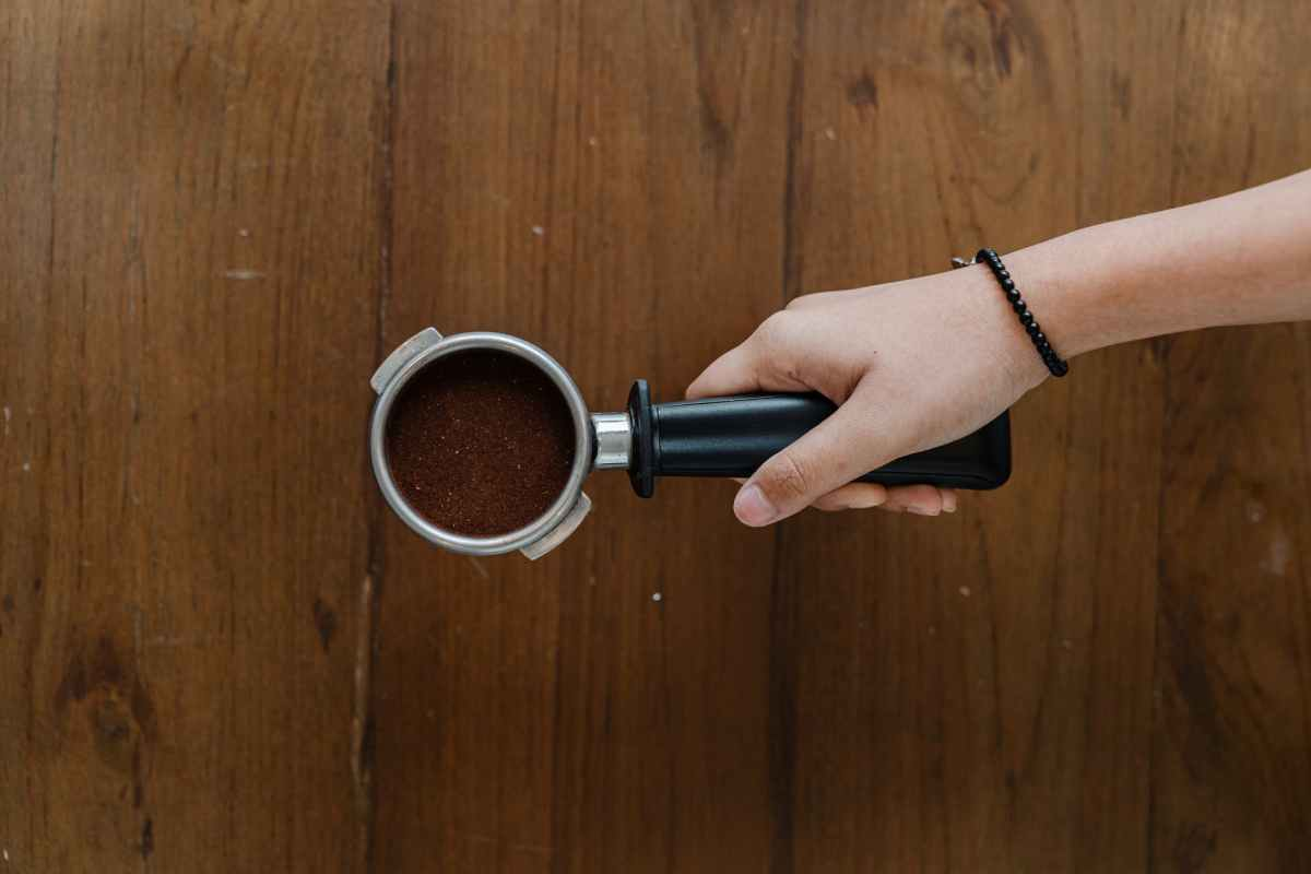 crop barista hand with ground coffee