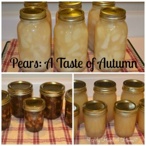 Pears - A Taste of Autumn