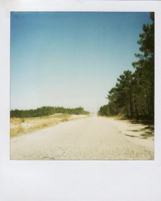 Summer09-2