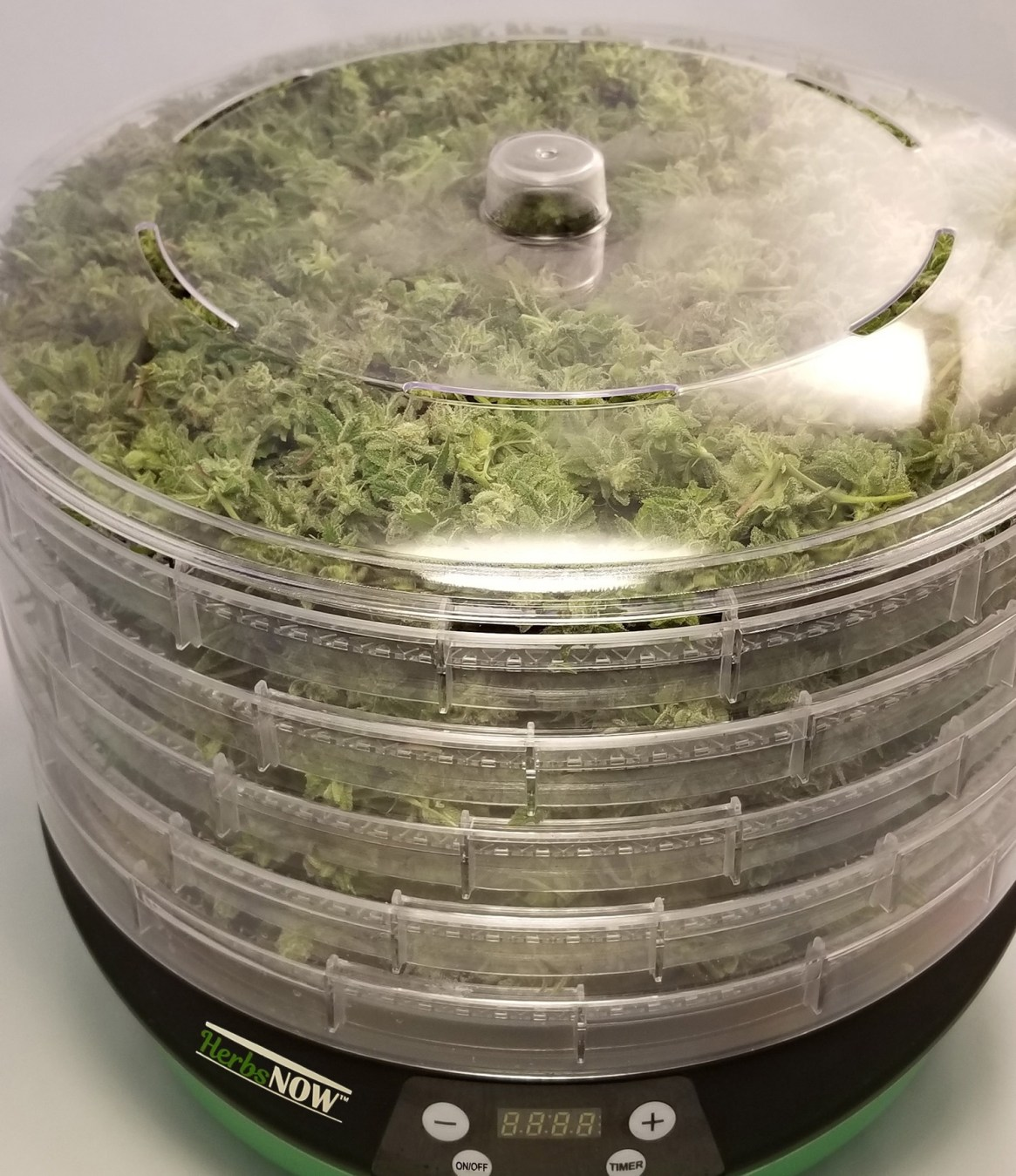 HerbsNOW is the solution for how to dry cannabis