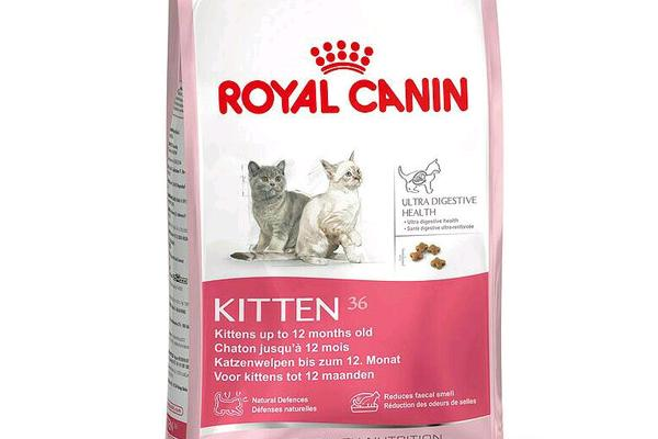 royal canin 36