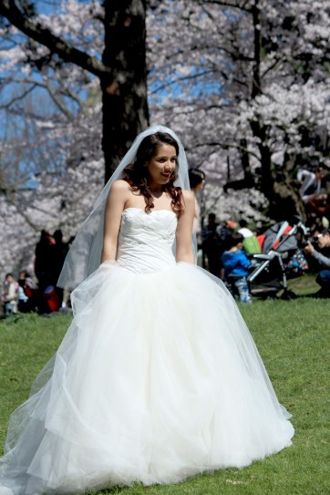 bridal photo shoot crash