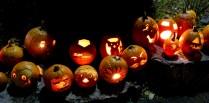 Pumpkin Parade Sorauren Park