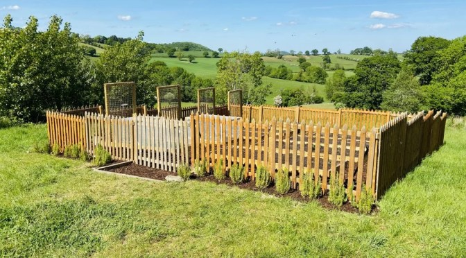 Our first ever veg patch – part five – planting veg plugs and installing the gate on sloping land