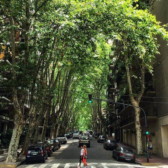 Calle de Belgrano