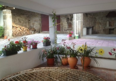 Flowering orchids outside by the well