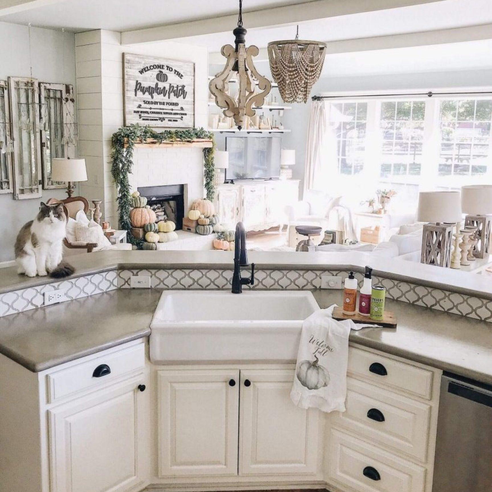 18 Farmhouse Kitchen Sink Ideas Decor Tips - myhomeorganic