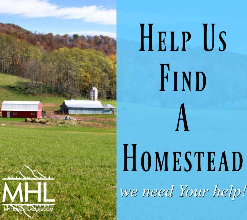 Help Find Us a Homestead! We need your help in finding us land for our new homestead. There's something in it for everyone so come join our journey.