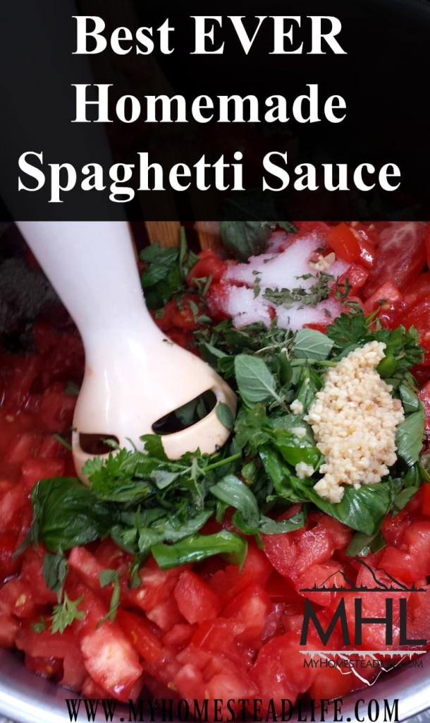 Best EVER Homemade Spaghetti Sauce Recipe- Never buy from a jar again!