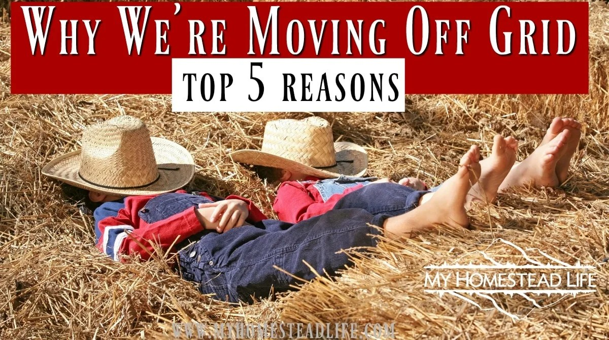 Top 5 Reasons to Move Off Grid