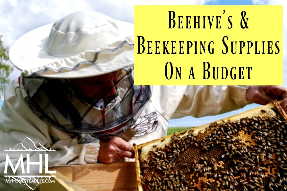 Beehive's & Beekeeping Supplies on a Budget