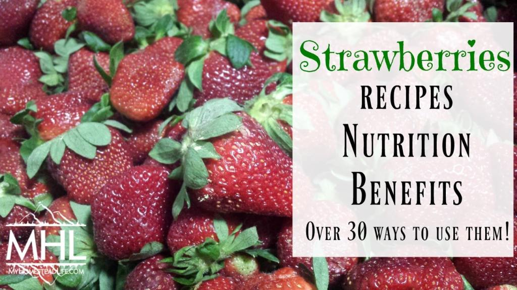 Your Ultimate Strawberry roundup. Strawberries: nutrition, Benefits, Recipes- Over 30 ways to use them!