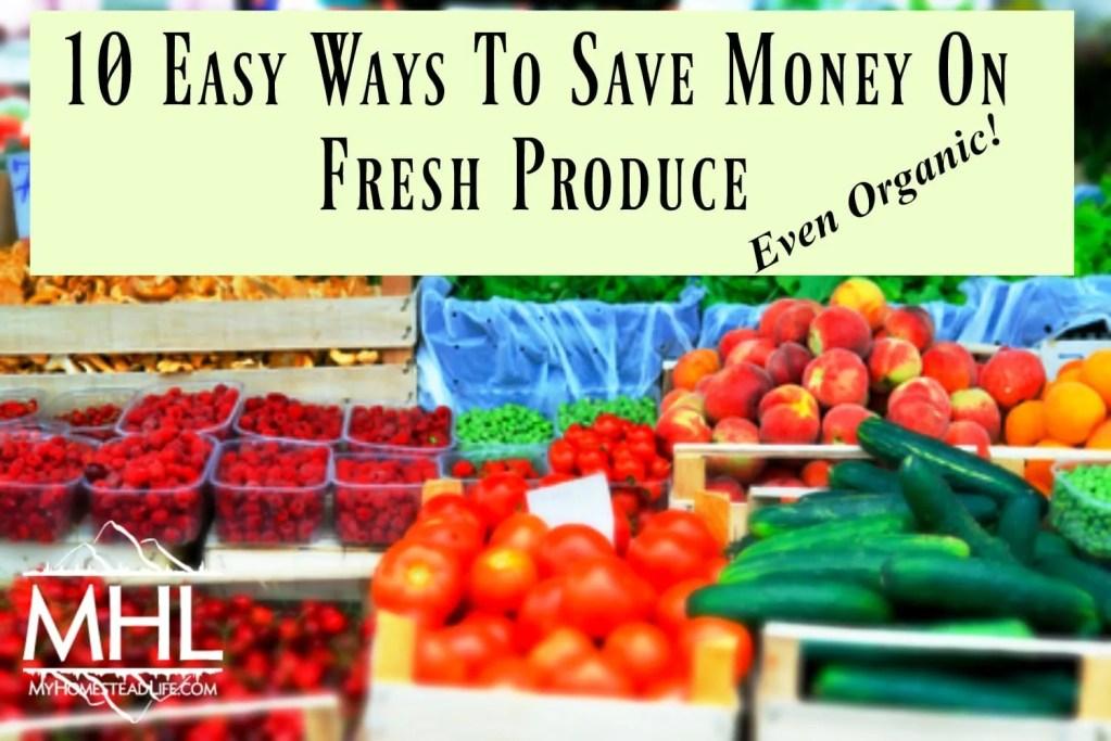 10 Easy Ways To Save Money On Fresh Produce- Even Organic