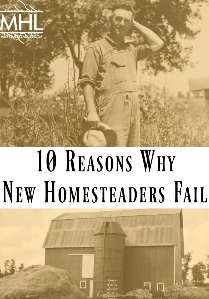 10 Reasons Why New Homesteaders Fail & Tips To Help You Succeed