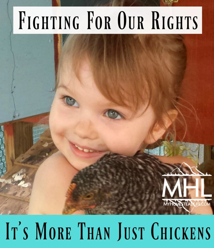 It's More Than Just Chickens- Fighting For Our Rights