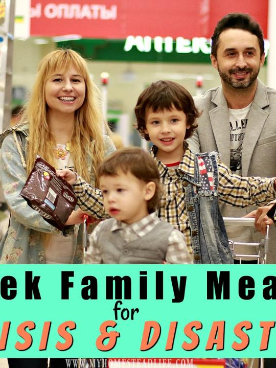 Two Week Family Meal Plan for Crisis & Disasters- With FREE Printable