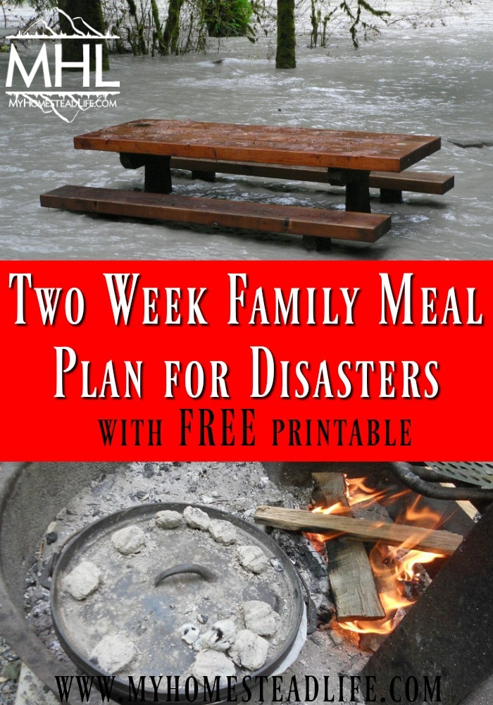 Two Week Family Meal Plan for Disasters- With FREE Printable