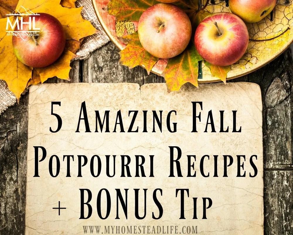 5 Amazing Fall Potpourri Recipes + Bonus Tip