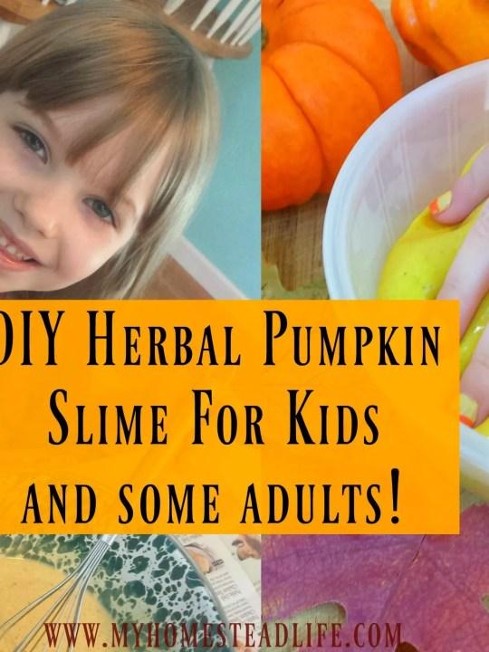 DIY Herbal Pumpkin Slime For Kids!