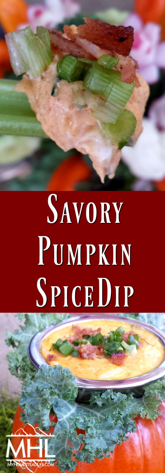 Savory Pumpkin Spice Dip with Fresh Herbs- perfect dip for the fall