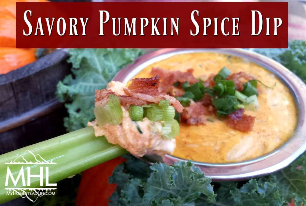 Savory Pumpkin Spice Dip with fresh herbs, perfect for the fall.