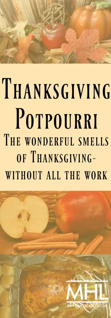 Thanksgiving Potpourri-The wonderful smells of Thanksgiving-without all the work