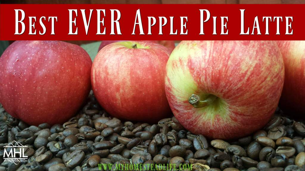 Best EVER Apple Pie Latte Recipe