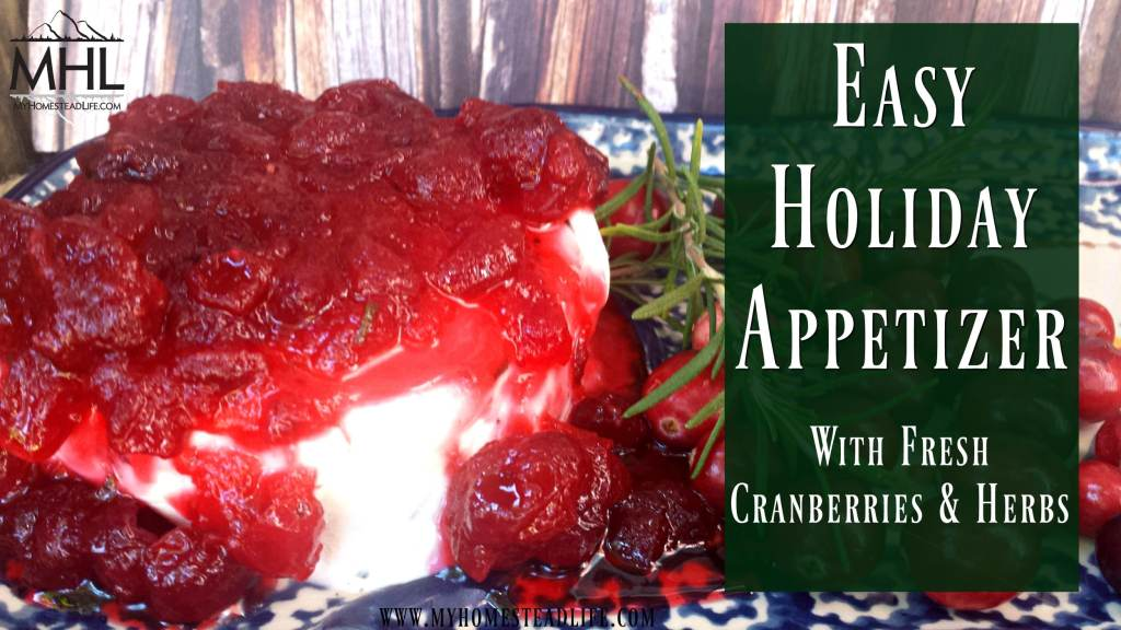 Easy Holiday Appetizer with Fresh Cranberries & Herbs