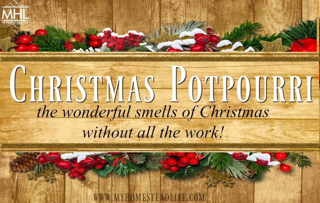 Christmas Potpourri- the wonderful smells of Christmas without all the work.