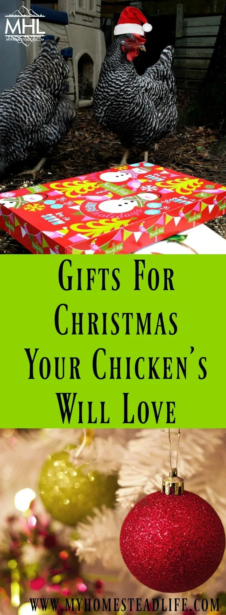Gifts For Christmas Your Chickens Will Love