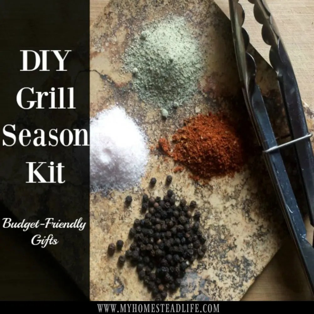 grill seasoning- grill kit- grilling- frugal gift ideas