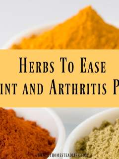 herbs-joint-arthritis-natural-pain