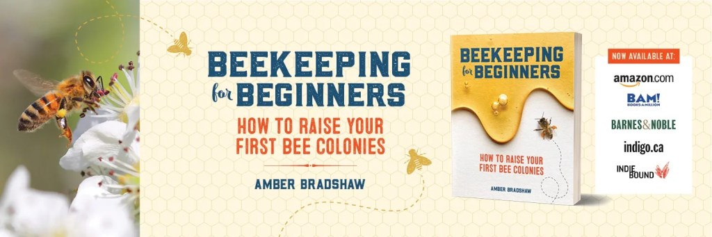 beekeeping-for-beginners-honey bees