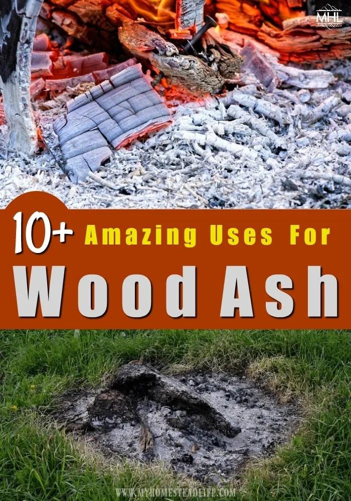 wood-ash-potash-fireplace-ashes-campfire